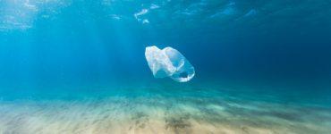 día mundial medioambiente bolsas plástico