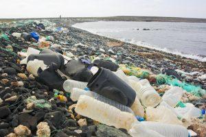 Prohibicion plasticos