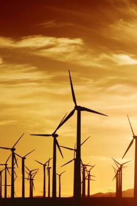 Foto renovables